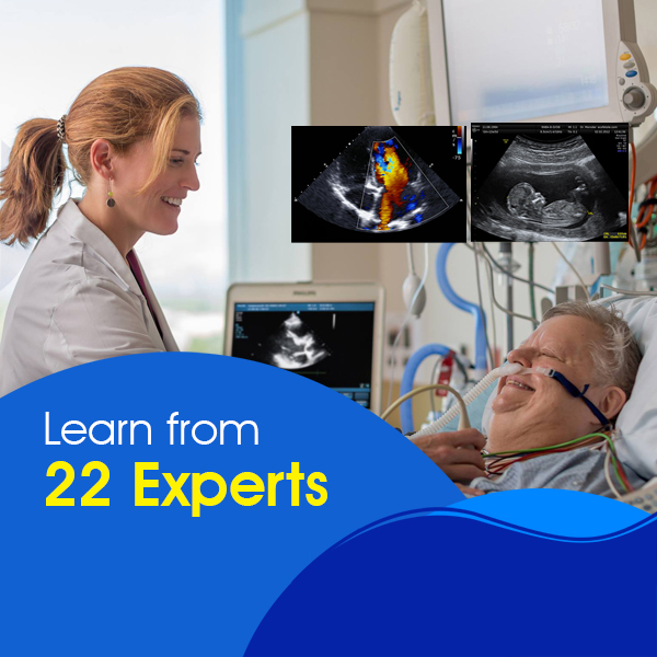 Echocardiogram & Ultrasound in Critical Care1