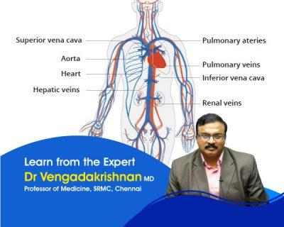 General Medicine – Cardiovascular System