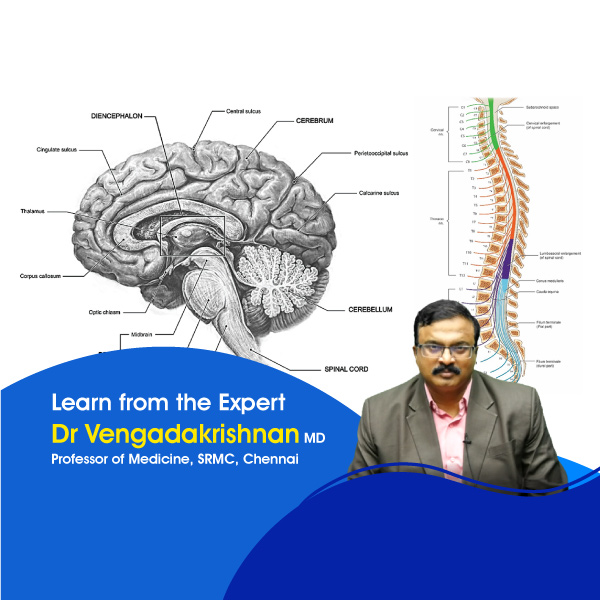General-Medicine-Central-Nervous-System